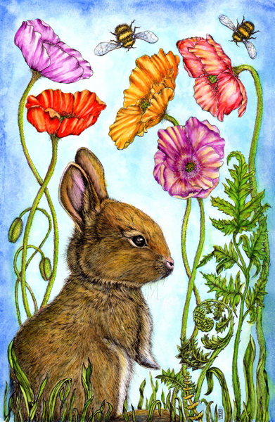 Michelle Hotchkiss - Wilberforce the Rabbit