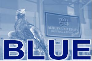 Auburn Swimming and Diving - Blue Team - Swim for MS